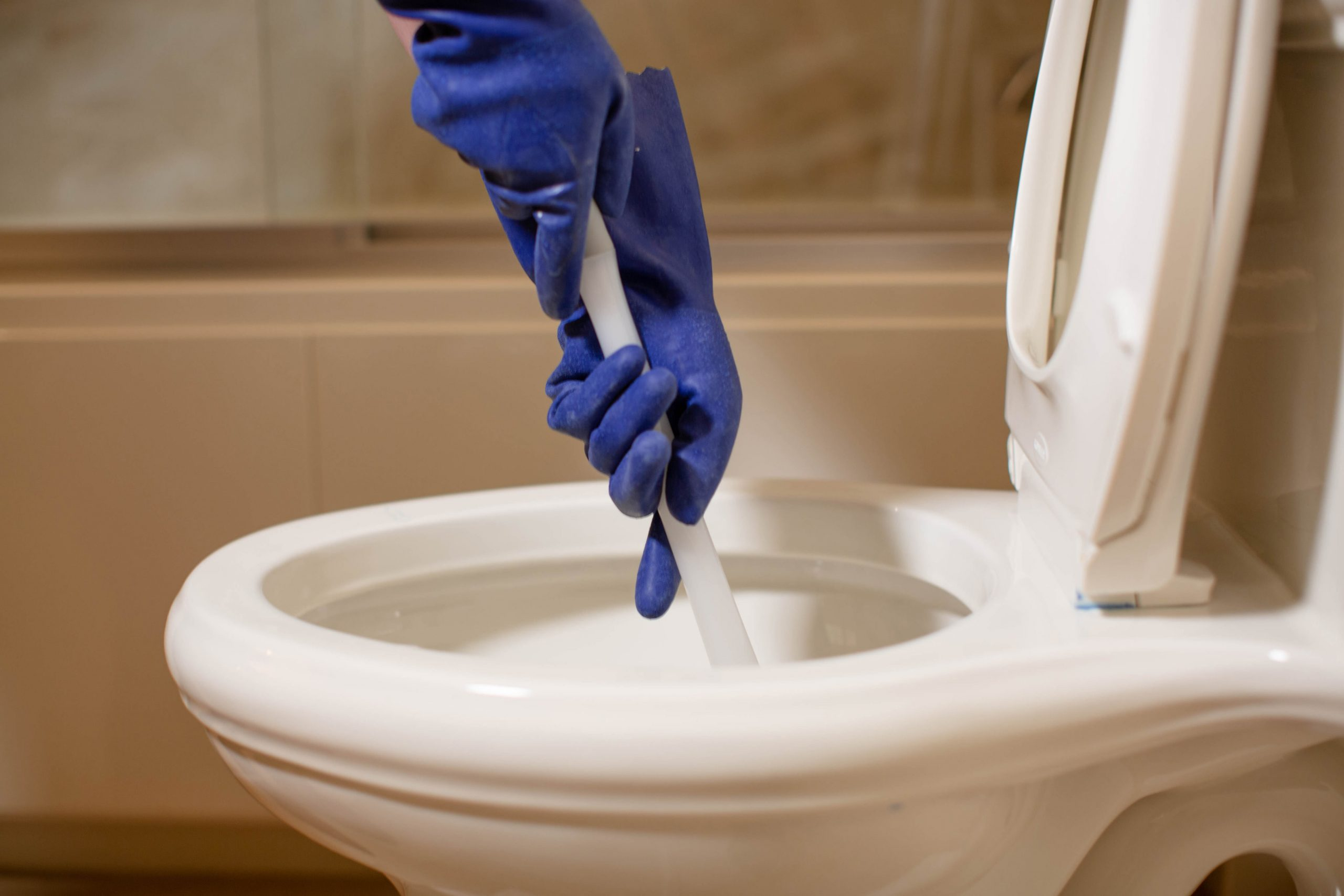 Clogged Toilet, Toilet Flanged or Drain